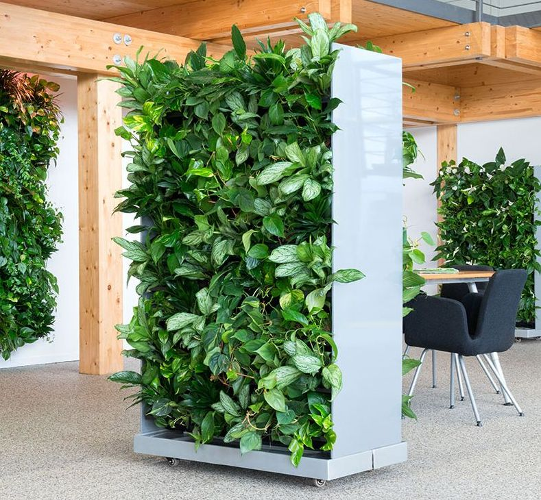 nextgen_-_living-wall-room-divider-gross